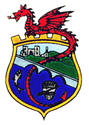 Newcastle Emlyn Town Council crest